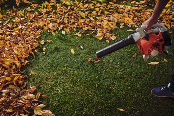 best leaf blower australia