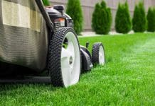 best lawn mower australia