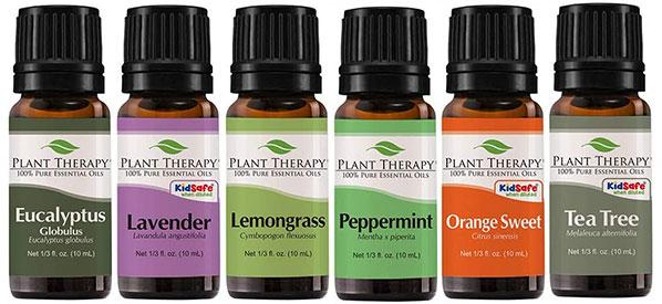 Plant Therapy Breathe Easy Set